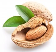 9248084-group-of-almond-nuts-with-leaves-isolated-on-a-white-background